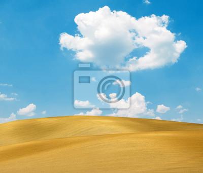 Постер Пейзаж песчаный Песчаные дюны, и ярко-синее небоПейзаж песчаный<br>Постер на холсте или бумаге. Любого нужного вам размера. В раме или без. Подвес в комплекте. Трехслойная надежная упаковка. Доставим в любую точку России. Вам осталось только повесить картину на стену!<br>