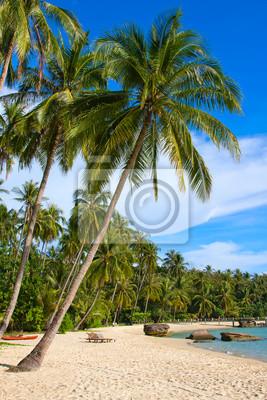 Постер Пейзаж морской Tropical beach, ТаиландПейзаж морской<br>Постер на холсте или бумаге. Любого нужного вам размера. В раме или без. Подвес в комплекте. Трехслойная надежная упаковка. Доставим в любую точку России. Вам осталось только повесить картину на стену!<br>