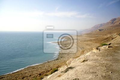 Постер Пейзаж песчаный Засушливых мертвого моря побережья ИзраиляПейзаж песчаный<br>Постер на холсте или бумаге. Любого нужного вам размера. В раме или без. Подвес в комплекте. Трехслойная надежная упаковка. Доставим в любую точку России. Вам осталось только повесить картину на стену!<br>