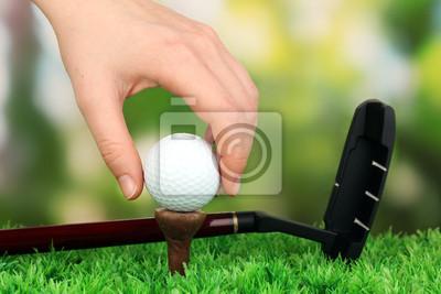 Постер Спорт Мяч для гольфа и драйвера на зеленой траве, открытый макро, 30x20 см, на бумагеГольф<br>Постер на холсте или бумаге. Любого нужного вам размера. В раме или без. Подвес в комплекте. Трехслойная надежная упаковка. Доставим в любую точку России. Вам осталось только повесить картину на стену!<br>