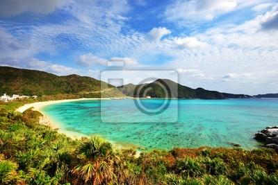 Постер Япония Aharen Пляж на острове Окинава, ЯпонияЯпония<br>Постер на холсте или бумаге. Любого нужного вам размера. В раме или без. Подвес в комплекте. Трехслойная надежная упаковка. Доставим в любую точку России. Вам осталось только повесить картину на стену!<br>