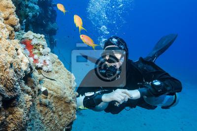 Постер Спорт Стороны горы scuba diver смотрит на рыб в океане, 30x20 см, на бумагеДайвинг<br>Постер на холсте или бумаге. Любого нужного вам размера. В раме или без. Подвес в комплекте. Трехслойная надежная упаковка. Доставим в любую точку России. Вам осталось только повесить картину на стену!<br>