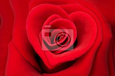 Постер Праздники Постер 52836920, 30x20 см, на бумаге02.14 День Святого Валентина (День всех влюбленных)<br>Постер на холсте или бумаге. Любого нужного вам размера. В раме или без. Подвес в комплекте. Трехслойная надежная упаковка. Доставим в любую точку России. Вам осталось только повесить картину на стену!<br>