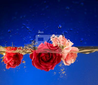 Постер Розы Роза rosse роза розаРозы<br>Постер на холсте или бумаге. Любого нужного вам размера. В раме или без. Подвес в комплекте. Трехслойная надежная упаковка. Доставим в любую точку России. Вам осталось только повесить картину на стену!<br>