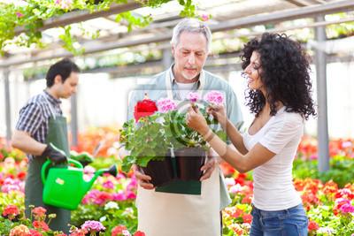 Женщина покупает цветы в теплице, 30x20 см, на бумаге07.22 День работников торговли<br>Постер на холсте или бумаге. Любого нужного вам размера. В раме или без. Подвес в комплекте. Трехслойная надежная упаковка. Доставим в любую точку России. Вам осталось только повесить картину на стену!<br>