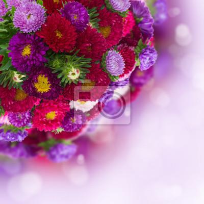 Постер Астры Букет свежих aster цветы на фоне бокеАстры<br>Постер на холсте или бумаге. Любого нужного вам размера. В раме или без. Подвес в комплекте. Трехслойная надежная упаковка. Доставим в любую точку России. Вам осталось только повесить картину на стену!<br>