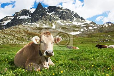 Бурая корова на зеленой траве пастбища, 30x20 см, на бумагеКоровы<br>Постер на холсте или бумаге. Любого нужного вам размера. В раме или без. Подвес в комплекте. Трехслойная надежная упаковка. Доставим в любую точку России. Вам осталось только повесить картину на стену!<br>