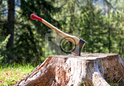 Постер 09.15 День работника леса