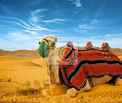 Туристический верблюдах по песчаным дюнам в пустыне, 24x20 см, на бумагеВерблюды<br>Постер на холсте или бумаге. Любого нужного вам размера. В раме или без. Подвес в комплекте. Трехслойная надежная упаковка. Доставим в любую точку России. Вам осталось только повесить картину на стену!<br>