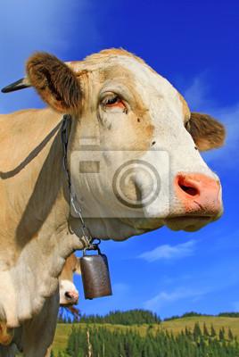 Постер Животные Голова коровы на фоне неба, 20x30 см, на бумагеКоровы<br>Постер на холсте или бумаге. Любого нужного вам размера. В раме или без. Подвес в комплекте. Трехслойная надежная упаковка. Доставим в любую точку России. Вам осталось только повесить картину на стену!<br>