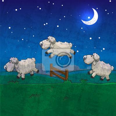 Постер Овцы