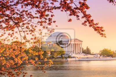 Постер Вашингтон В Мемориал Джефферсона в ходе фестиваль цветения сакуры в ВашингтонеВашингтон<br>Постер на холсте или бумаге. Любого нужного вам размера. В раме или без. Подвес в комплекте. Трехслойная надежная упаковка. Доставим в любую точку России. Вам осталось только повесить картину на стену!<br>