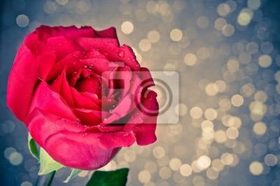Роза на голубом фон боке, День Святого Валентина и любовь концепции, 30x20 см, на бумагеРозы<br>Постер на холсте или бумаге. Любого нужного вам размера. В раме или без. Подвес в комплекте. Трехслойная надежная упаковка. Доставим в любую точку России. Вам осталось только повесить картину на стену!<br>