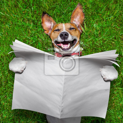 Очень смешные собаки, 20x20 см, на бумаге04.01 День смеха (День дурака)<br>Постер на холсте или бумаге. Любого нужного вам размера. В раме или без. Подвес в комплекте. Трехслойная надежная упаковка. Доставим в любую точку России. Вам осталось только повесить картину на стену!<br>
