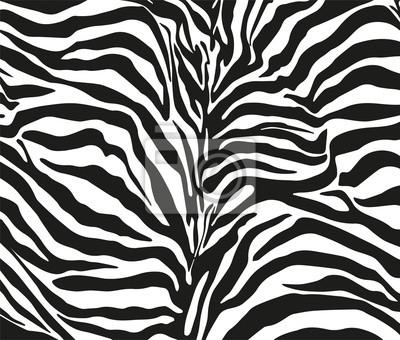 Постер Зебры