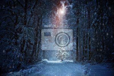 Постер Ночь WeihnachtsbaumНочь<br>Постер на холсте или бумаге. Любого нужного вам размера. В раме или без. Подвес в комплекте. Трехслойная надежная упаковка. Доставим в любую точку России. Вам осталось только повесить картину на стену!<br>