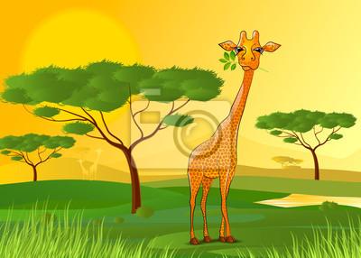 Постер Дизайнерские обои для детской Жираф ест листья в Африке на закатеДизайнерские обои для детской<br>Постер на холсте или бумаге. Любого нужного вам размера. В раме или без. Подвес в комплекте. Трехслойная надежная упаковка. Доставим в любую точку России. Вам осталось только повесить картину на стену!<br>