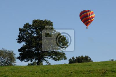 Постер-картина Воздушные шары Montgolfi?reВоздушные шары<br>Постер на холсте или бумаге. Любого нужного вам размера. В раме или без. Подвес в комплекте. Трехслойная надежная упаковка. Доставим в любую точку России. Вам осталось только повесить картину на стену!<br>