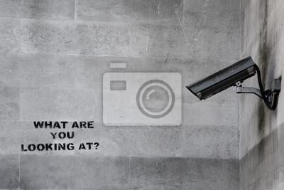 Постер-картина Стрит-арт Знаменитого граффити Бэнкси видеонаблюденияСтрит-арт<br>Постер на холсте или бумаге. Любого нужного вам размера. В раме или без. Подвес в комплекте. Трехслойная надежная упаковка. Доставим в любую точку России. Вам осталось только повесить картину на стену!<br>