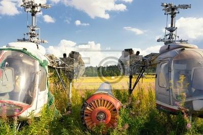 Постер-картина Вертолеты Старый и ржавый фюзеляж самолета вертолеты на зеленой травеВертолеты<br>Постер на холсте или бумаге. Любого нужного вам размера. В раме или без. Подвес в комплекте. Трехслойная надежная упаковка. Доставим в любую точку России. Вам осталось только повесить картину на стену!<br>