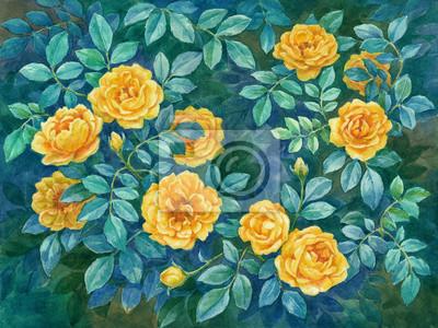 Постер Цветы в современной живописи Акварельные цветы, дикие розы жёлтые.Цветы в современной живописи<br>Постер на холсте или бумаге. Любого нужного вам размера. В раме или без. Подвес в комплекте. Трехслойная надежная упаковка. Доставим в любую точку России. Вам осталось только повесить картину на стену!<br>