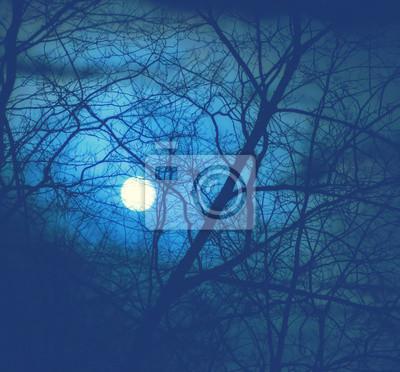 Постер Полнолуние Полная луна за ветви деревьев в темном лесу ночьюПолнолуние<br>Постер на холсте или бумаге. Любого нужного вам размера. В раме или без. Подвес в комплекте. Трехслойная надежная упаковка. Доставим в любую точку России. Вам осталось только повесить картину на стену!<br>