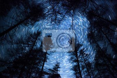 Постер Ночь Красивое ночное небо, Млечный Путь, звезды тропы и деревьяНочь<br>Постер на холсте или бумаге. Любого нужного вам размера. В раме или без. Подвес в комплекте. Трехслойная надежная упаковка. Доставим в любую точку России. Вам осталось только повесить картину на стену!<br>