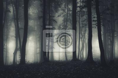 Постер Туман Темный лес пейзаж ночьюТуман<br>Постер на холсте или бумаге. Любого нужного вам размера. В раме или без. Подвес в комплекте. Трехслойная надежная упаковка. Доставим в любую точку России. Вам осталось только повесить картину на стену!<br>