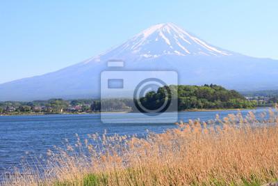 Постер Гора Фудзияма Гора Фудзи в Японии озеро КавагутиГора Фудзияма<br>Постер на холсте или бумаге. Любого нужного вам размера. В раме или без. Подвес в комплекте. Трехслойная надежная упаковка. Доставим в любую точку России. Вам осталось только повесить картину на стену!<br>