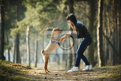 Постер Животные и люди