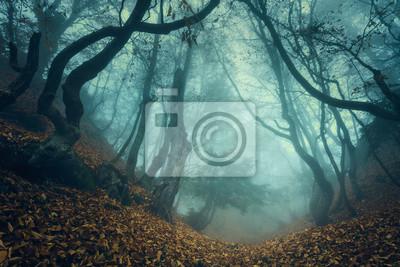 Постер Туман Тропа через таинственный темный старый лес в тумане. ОсеньТуман<br>Постер на холсте или бумаге. Любого нужного вам размера. В раме или без. Подвес в комплекте. Трехслойная надежная упаковка. Доставим в любую точку России. Вам осталось только повесить картину на стену!<br>