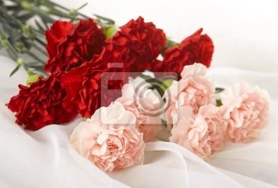 """Постер Гвоздики """"Красные и розовые гвоздики на белом полотнище"""" от Artwall"""