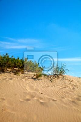 Постер Анапа Песчаные дюны на берегу Черного моряАнапа<br>Постер на холсте или бумаге. Любого нужного вам размера. В раме или без. Подвес в комплекте. Трехслойная надежная упаковка. Доставим в любую точку России. Вам осталось только повесить картину на стену!<br>
