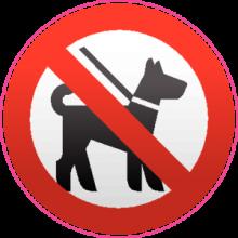 На автомобиль Наклейка «C животными запрещено»Разные<br><br>