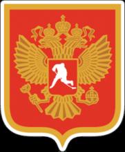 На автомобиль Наклейка «Федерация Хоккея России» от Artwall