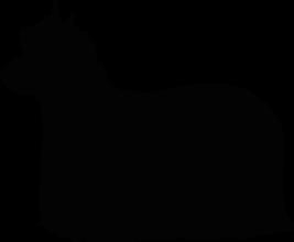 На автомобиль Наклейка «Йоркширский терьер»Собаки<br><br>