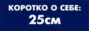 На автомобиль Наклейка «Коротко о себе: 25см»Мужские<br><br>