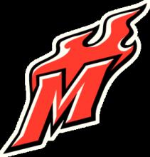 На автомобиль Наклейка «Металлург Новокузнецк Логотип»Хоккейные клубы<br><br>