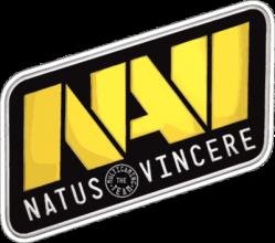 На автомобиль Наклейка «Natus Vincere»Киберспорт<br><br>