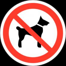 На автомобиль Наклейка «P-14 Запрещается вход (проход) с животными»Запрещающие<br><br>