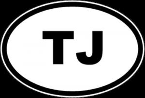 На автомобиль Наклейка «TJ - Таджикистан»Автомобильные<br><br>