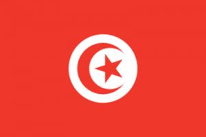 На автомобиль Наклейка «Тунис»Страны и путешествия<br><br>