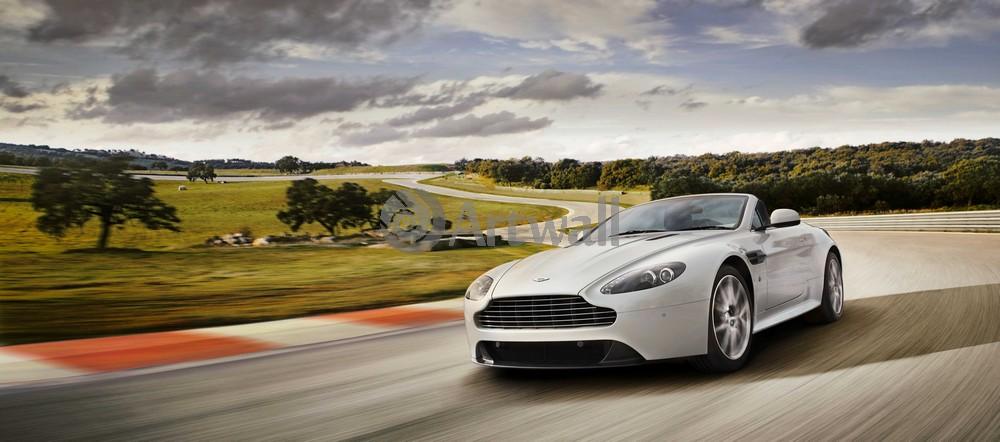 Aston Martin Vantage Roadster, 45x20 см, на бумагеVantage Roadster<br>Постер на холсте или бумаге. Любого нужного вам размера. В раме или без. Подвес в комплекте. Трехслойная надежная упаковка. Доставим в любую точку России. Вам осталось только повесить картину на стену!<br>
