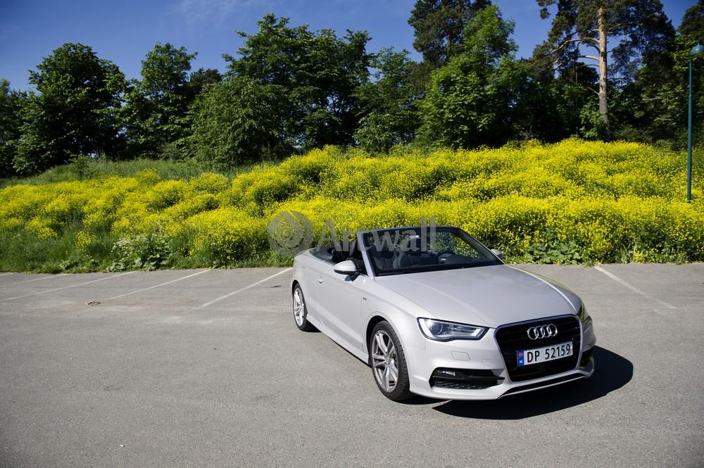 Постер Audi A3 Cabriolet, 30x20 см, на бумагеA3 Cabriolet<br>Постер на холсте или бумаге. Любого нужного вам размера. В раме или без. Подвес в комплекте. Трехслойная надежная упаковка. Доставим в любую точку России. Вам осталось только повесить картину на стену!<br>