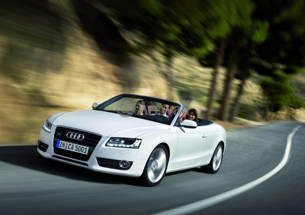 Audi A5 Cabriolet, 28x20 см, на бумагеA5 Cabriolet<br>Постер на холсте или бумаге. Любого нужного вам размера. В раме или без. Подвес в комплекте. Трехслойная надежная упаковка. Доставим в любую точку России. Вам осталось только повесить картину на стену!<br>