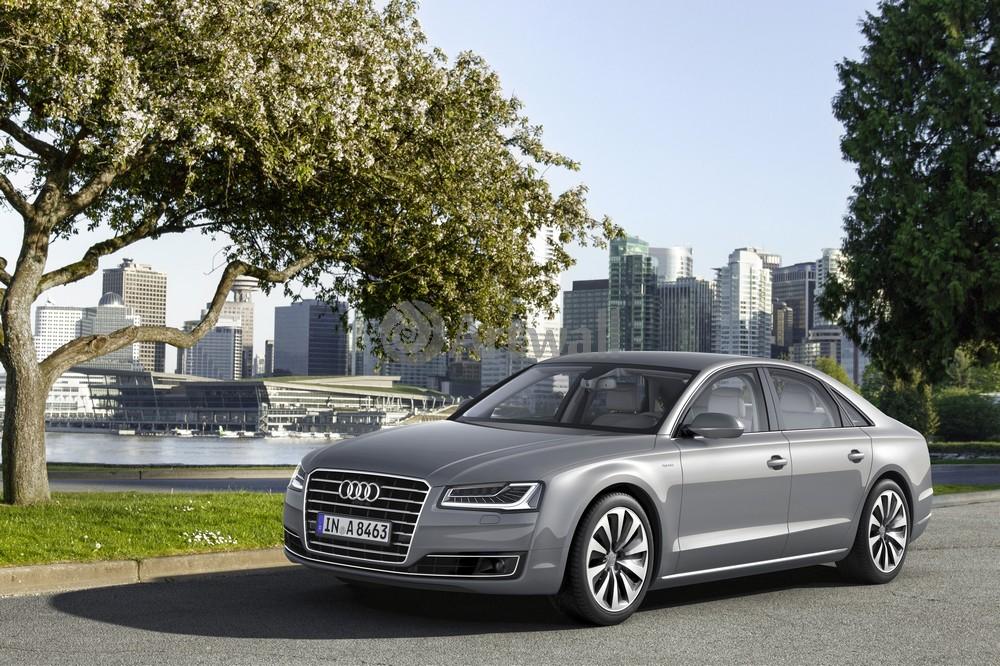 Постер Audi A8, 30x20 см, на бумагеA8<br>Постер на холсте или бумаге. Любого нужного вам размера. В раме или без. Подвес в комплекте. Трехслойная надежная упаковка. Доставим в любую точку России. Вам осталось только повесить картину на стену!<br>