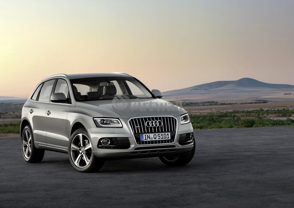 Audi Q5, 28x20 см, на бумагеQ5<br>Постер на холсте или бумаге. Любого нужного вам размера. В раме или без. Подвес в комплекте. Трехслойная надежная упаковка. Доставим в любую точку России. Вам осталось только повесить картину на стену!<br>