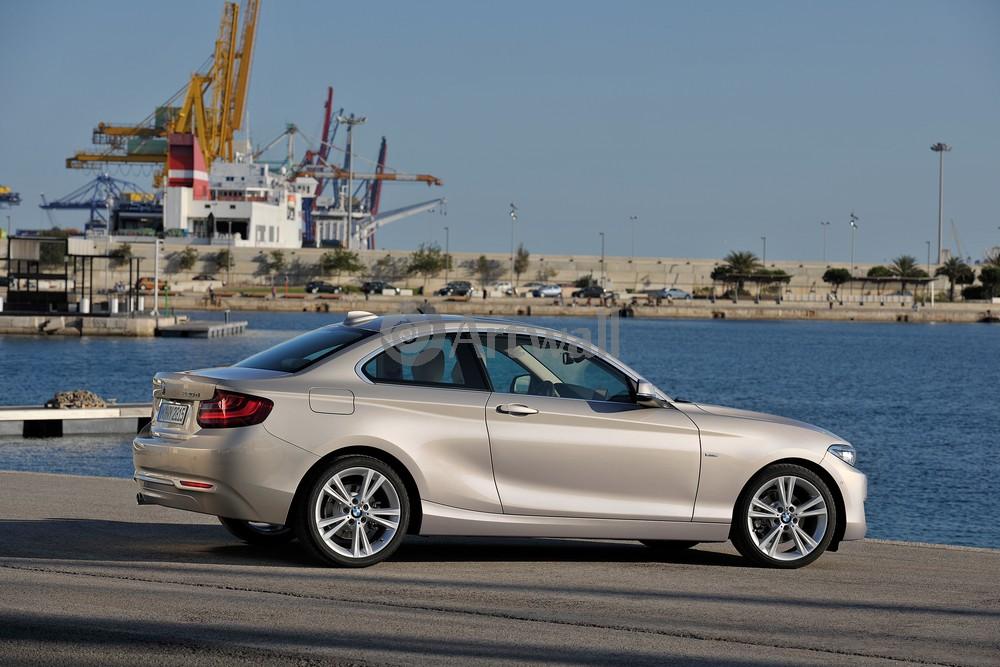 Постер BMW 2 Series, 30x20 см, на бумаге2 Series<br>Постер на холсте или бумаге. Любого нужного вам размера. В раме или без. Подвес в комплекте. Трехслойная надежная упаковка. Доставим в любую точку России. Вам осталось только повесить картину на стену!<br>