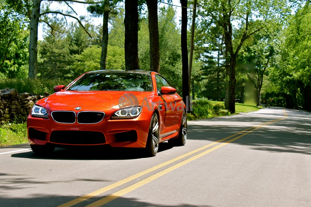 BMW M6 Coupe, 30x20 см, на бумагеM6 Coupe<br>Постер на холсте или бумаге. Любого нужного вам размера. В раме или без. Подвес в комплекте. Трехслойная надежная упаковка. Доставим в любую точку России. Вам осталось только повесить картину на стену!<br>