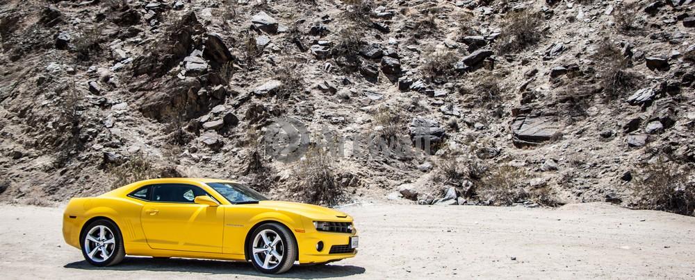 Постер Chevrolet Camaro, 50x20 см, на бумагеCamaro<br>Постер на холсте или бумаге. Любого нужного вам размера. В раме или без. Подвес в комплекте. Трехслойная надежная упаковка. Доставим в любую точку России. Вам осталось только повесить картину на стену!<br>
